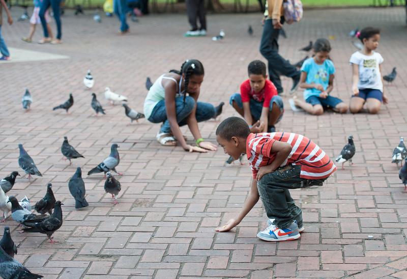 Feeding The Pigeons II