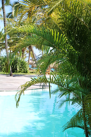 Zoetry Agua Punta Cana All Inclusive Boutique Resort