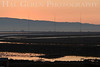 Dumbarton Bridge Sunrise <br /> Don Edwards Natl Wildlife Refuge, Fremont, CA<br /> 0706R-DS1