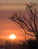 Sunrise<br /> Don Edwards Wildlife Refuge, Fremont, California<br /> 0708R-S1C