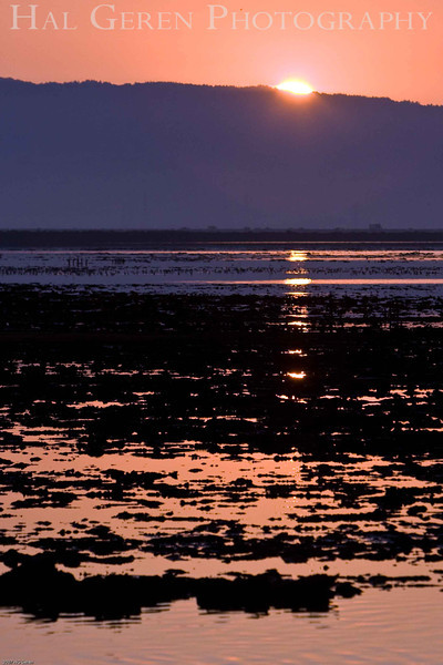 Sunrise<br /> Don Edwards Natl Wildlife Refuge, Fremont, California<br /> 0711R-S1E1