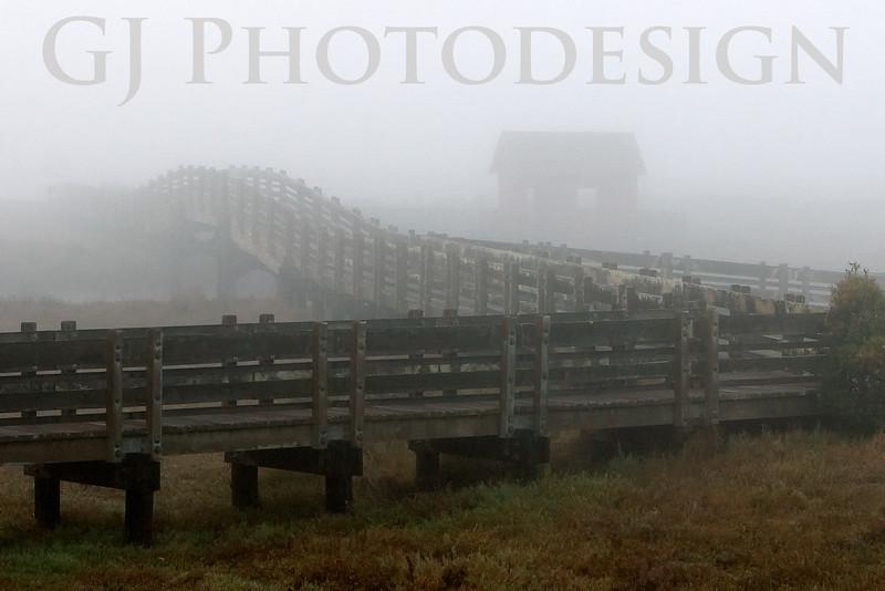 Bridge in Fog<br /> Don Edwards National Wildlife Refuge<br /> 0811R-BF1