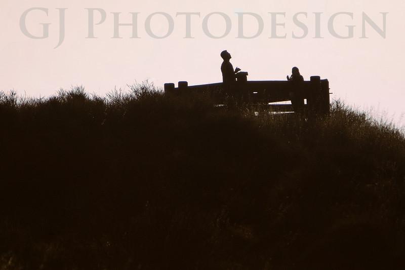 Celebrate the Sunrise<br /> Don Edwards Nat'l Wildlife Refuge, Fremont, CA<br /> 0810R-STS1