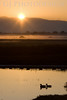 Sunrise over the Marsh<br /> Don Edwards National Wildlife Refuge<br /> 0811R-SOTFM1