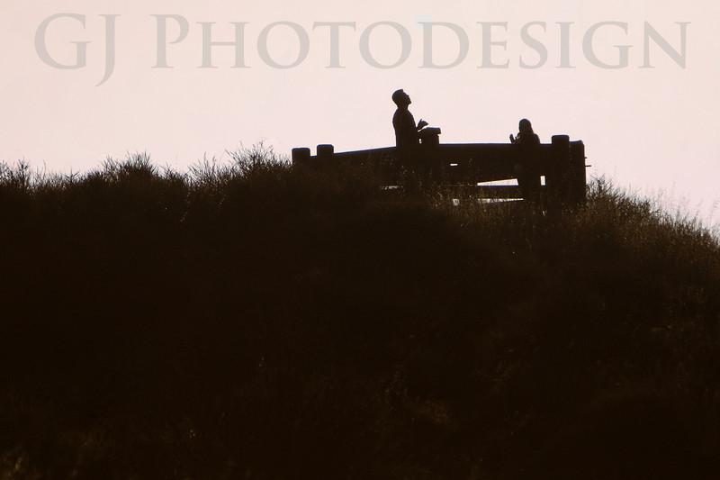 Celebrate the Sunrise<br /> Don Edwards Nat'l Wildlife Refuge, Fremont, California<br /> 0810R-CTS1