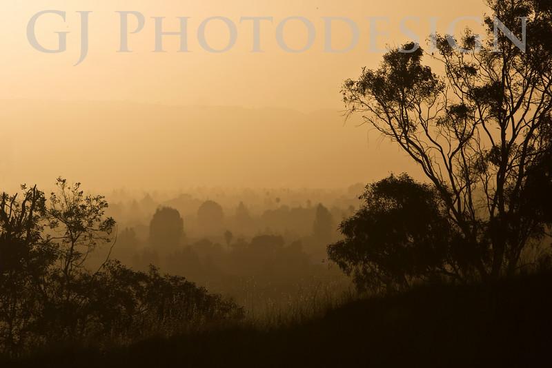 Don Edwards Nat'l Wildlife Refuge, Fremont, California<br /> 0807R-SITT1
