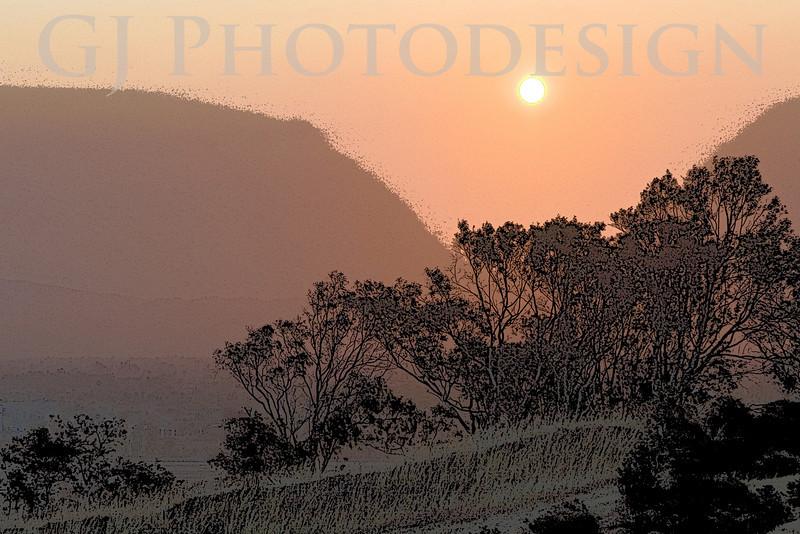 Sunrise over the Trees<br /> Don Edwards Nat'l Wildlife Refuge, Fremont, CA<br /> 0807R-SOT1E1