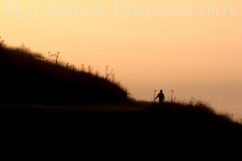 Early morning walker<br /> Don Edwards Natl Wildlife Refuge, Fremont, California<br /> 0812R-SH1