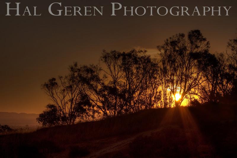Sunrise<br /> Don Edwards Natl Wildlife Refuge, Fremont, California<br /> 0909R-STH5