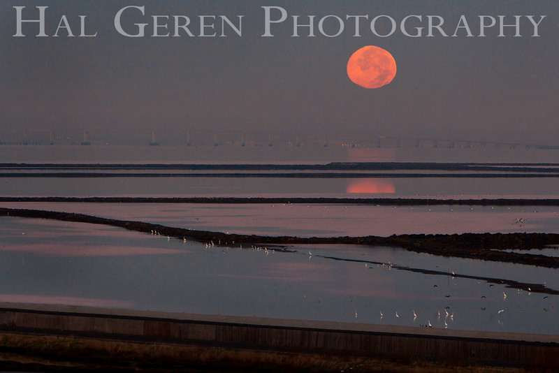 Moon over the levees<br /> Don Edwards National Wildlife Refuge, Newark, CA<br /> 0911R-M2