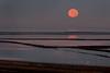 Moon over the levees<br /> Don Edwards National Wildlife Refuge, Newark, CA<br /> 0911R-M2