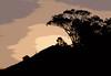 Front Hill<br /> Don Edwards National Wildlife Refuge, Fremont, CA<br /> 1001R-FH1E2