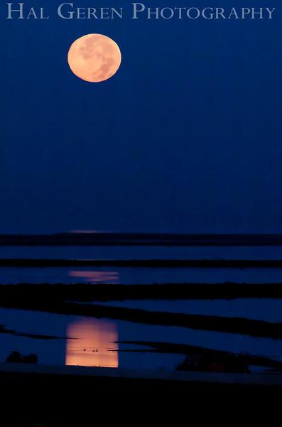Moon over the Levees<br /> Don Edwards National Wildlife Refuge, Newark, CA<br /> 0911R-M1