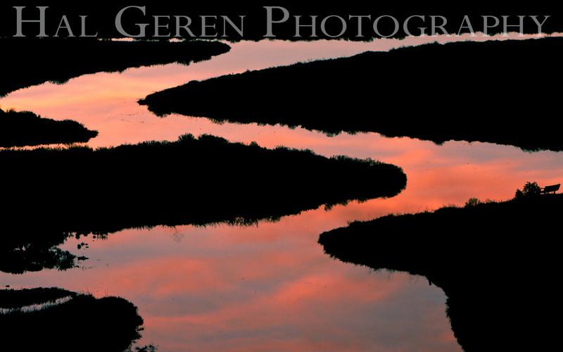 Newark Slough<br /> Don Edwards National Wildlife Refuge, Fremont, CA<br /> 0911R-S1