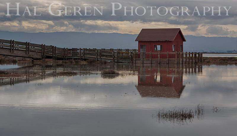 Don Edwards National Wildlife Refuge, Fremont, California<br /> 1212R-RBH2