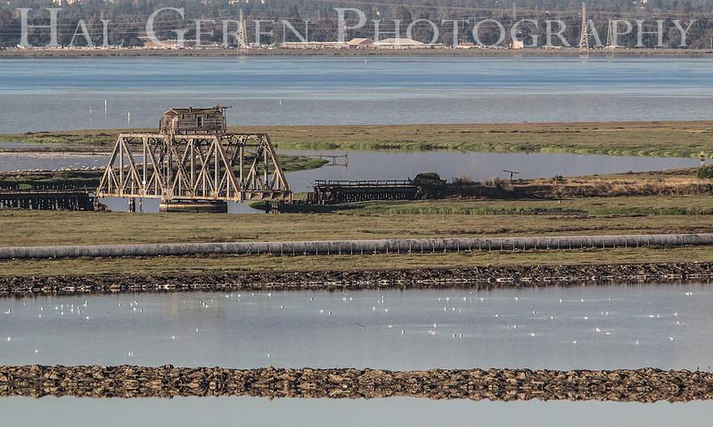 Don Edwards Natl Wildlife Refuge<br /> Fremont, California<br /> 1206R-SB5