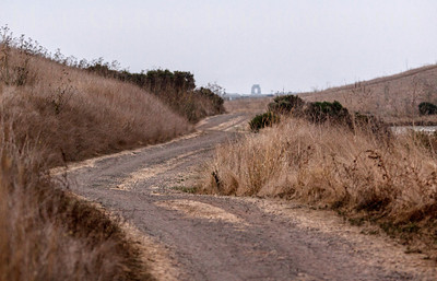 Trail along the Levees Don Edwards National Wildlife Reserve Fremont, California 1310R-LT1