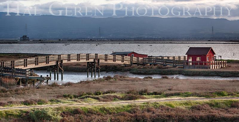 Don Edwards National Wildlife Refuge<br /> Fremont, California<br /> 1303R-RH1
