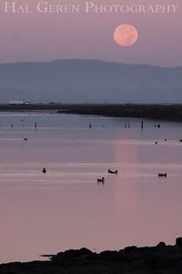 Moonset Fremont, California 1309R-M1