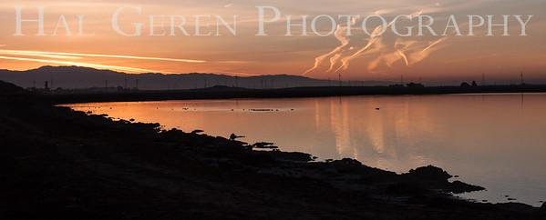Salt Ponds Don Edwards National Wildlife Refuge, Fremont, California 1407R-SP1
