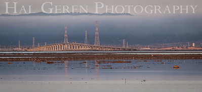 Dumbarton Bridge Don Edwards National Wildlife Refuge, Fremont, California 1407R-DB3
