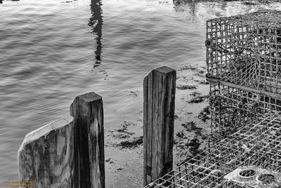 """Traps - 2"" Pigeon Cove - Rockport, Massachusetts"