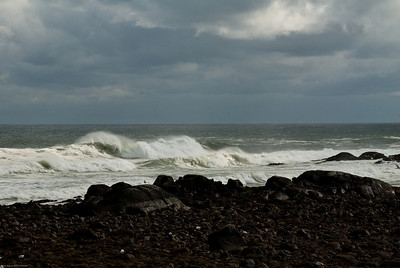 Gathering Surf