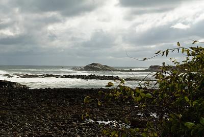 Spotlight on Brace's Cove