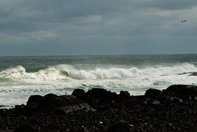 Gathering Surf_2