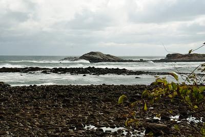 Brace's Cove Surf