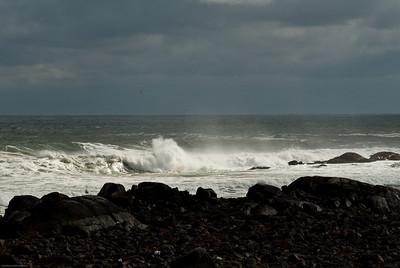 Surf's Sentinel