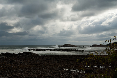 Brace's Cove-Before the Storm_3
