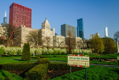 Art on the Farm - Downtown Chicago