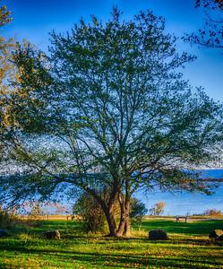 """Kittery Point Arbor"" - Kittery, Maine"