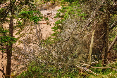 """""""Sand Beach"""" Acadia National Park"""