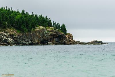 """""""Lands End"""" Sand Beach - Acadia National Park, Bar Harbor, Maine"""