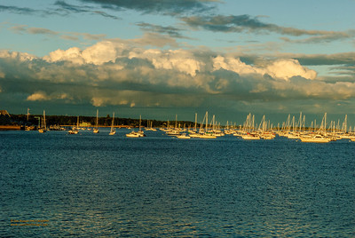 """Beverly Harbor Shelf Clouds"""