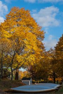 """""""Autumn Drydock"""""""