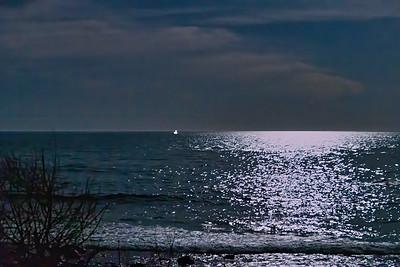 """""""Moonlight Fishing"""""""