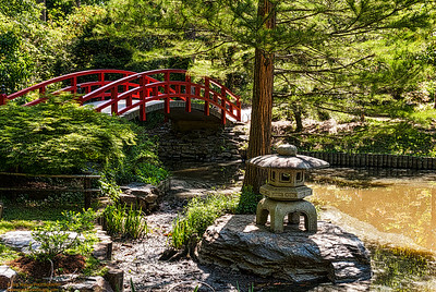 """Japanese Garden in the Duke Gardens"""