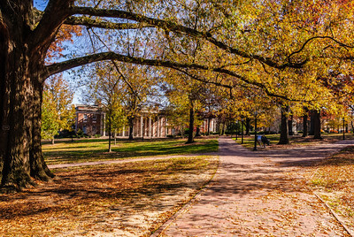 Campus Walk University of North Carolina Chapel Hill, North Carolina