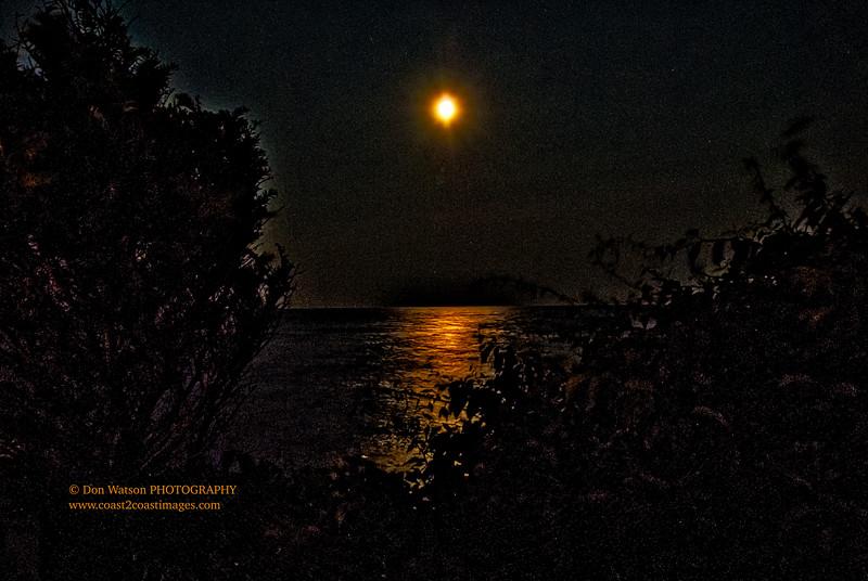 """Moonlighting"""