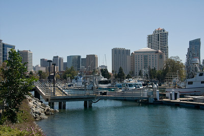 Safe Harbor in San Diego