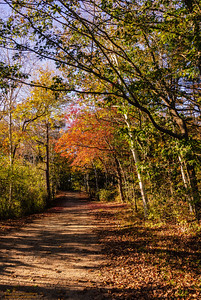 """A Walk in the Park"" - Kittery Point, Maine"