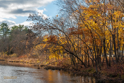 """""""Mid-Autumn Along the Ipsiwch River"""""""