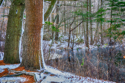 """Idyllic Winter's Setting"" Buswell Pond Gloucester, Massachusetts"