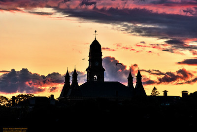 "'City Hall Silhouette"""