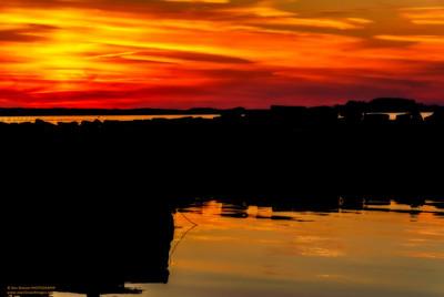 """""""Burnished Sunset"""""""