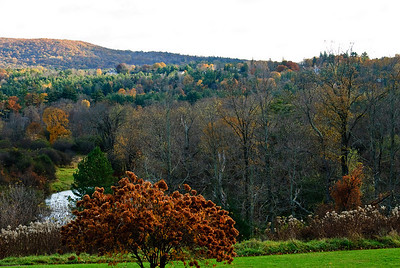 Housatonic Autumn