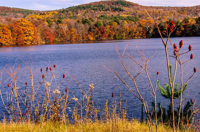 """Autumn at Queechy Lake"" - New York"
